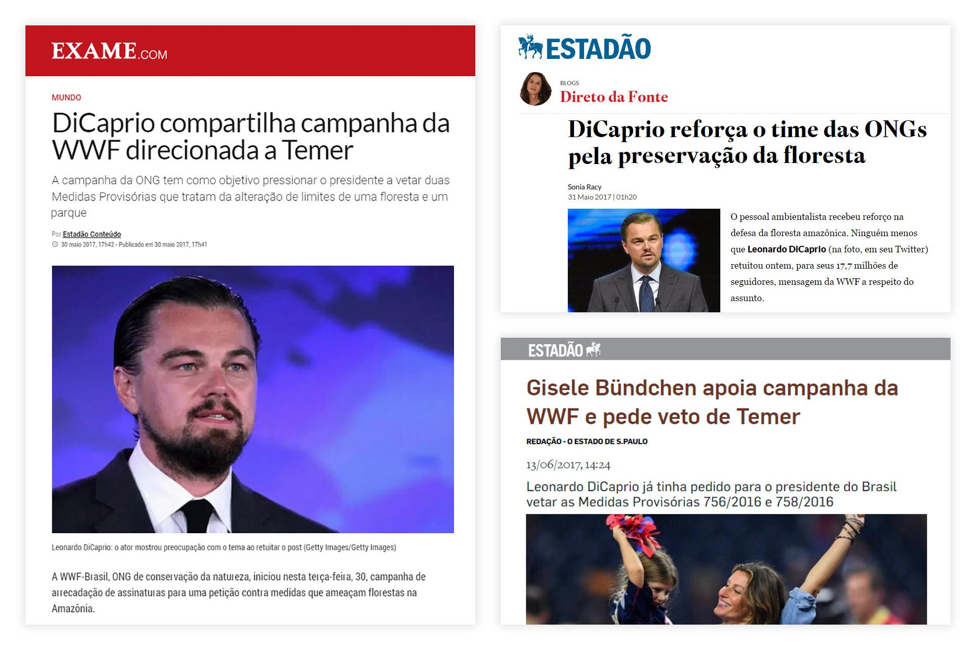 case-renca-wwf-brasil-02