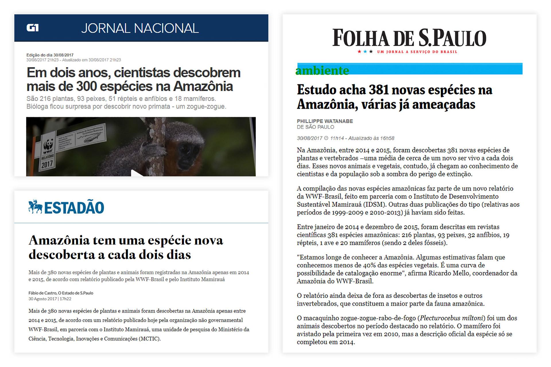 case-renca-wwf-brasil-04